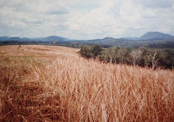 タヤンの丘(ボーキサイト鉱床)